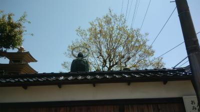 JoyRun☆941st_卯辰山山麓寺院群その1♪