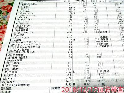 181217血液検査結果