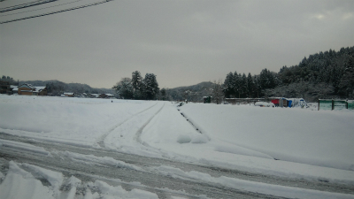 昨日の朝の雪の様子♪