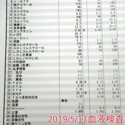 20190513血液検査結果♪