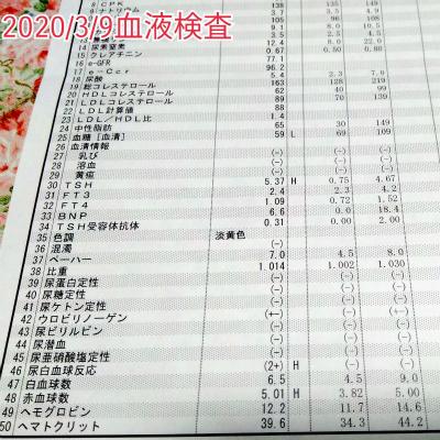 200309血液検査結果♪