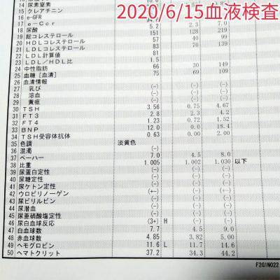 2020/06/15血液検査