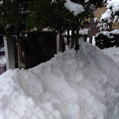 210110自宅周辺の雪その2